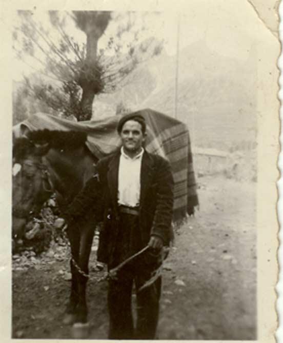 Laureano-El-Aceitunero